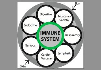 Yoga for Better Immunity