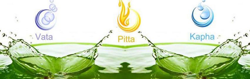 Vata Pitta Kapha Doshas